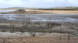 theewaterskloof dam drought conditions