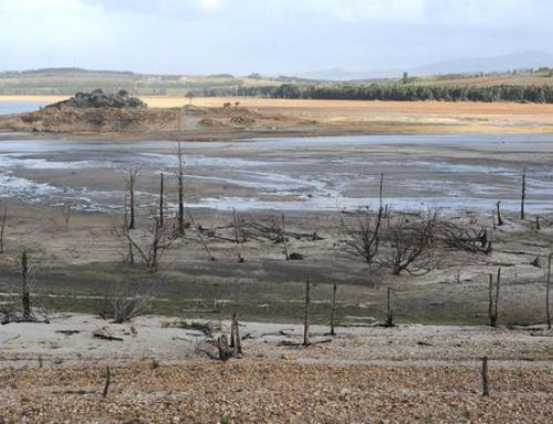 Mid Winter Dam Levels & Water Crisis Continues